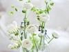 Adornos florales para bodas: botellas y vasos