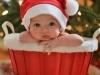 Bebés en Navidad: Foto especial