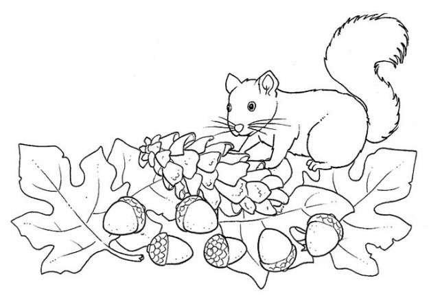 Dibujos para colorear del otoño para niños: Los mejores