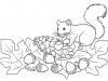 Dibujos de otoño para colorear: ardillas