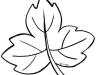 Dibujos de otoño para colorear: Hoja