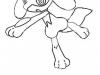 Pokémon lucha Riolu