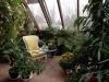 Jardín de invierno decoración: invernadero con sillones