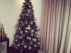 La Navidad llega a casa de los famosos: Eva González