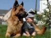 Niños y mascotas: en el jardín