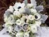 Ramos de novia de invierno: portada