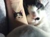 Tatuajes mascotas: gato cara