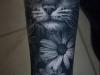 Tatuajes mascotas: gato real