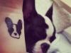 Tatuajes mascotas: perro cara