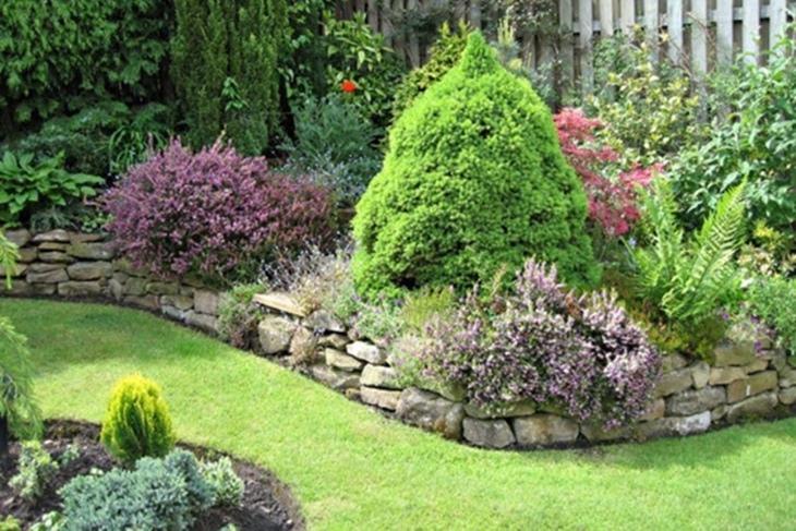 Jardín: Cuidados básicos y nociones de mantenimiento