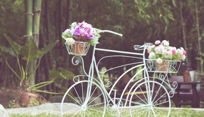 Plantas de verano para jardín: Las más adecuadas