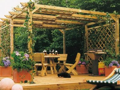 Plantas aromáticas y medicinales para el jardín: Tipos y consejos