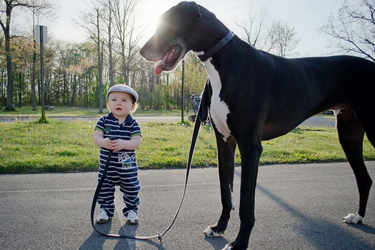 Niños y mascotas: Los mejores amigos