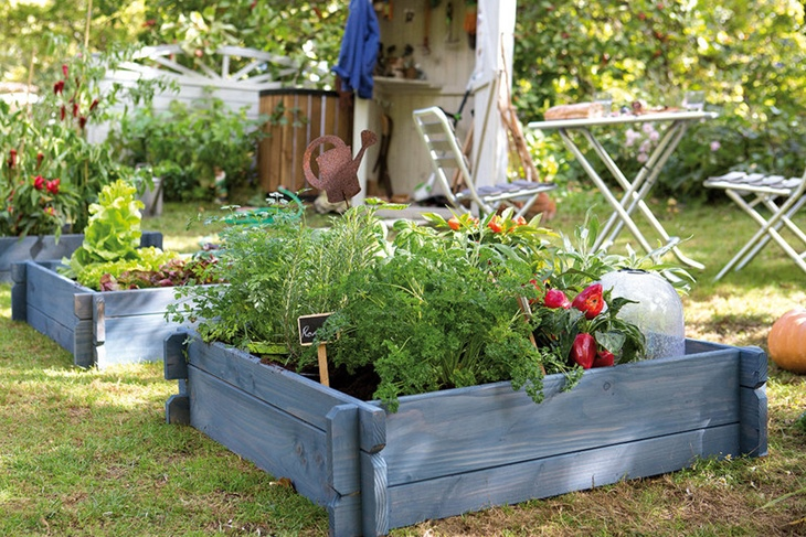Cómo hacer un huerto en el jardín paso a paso