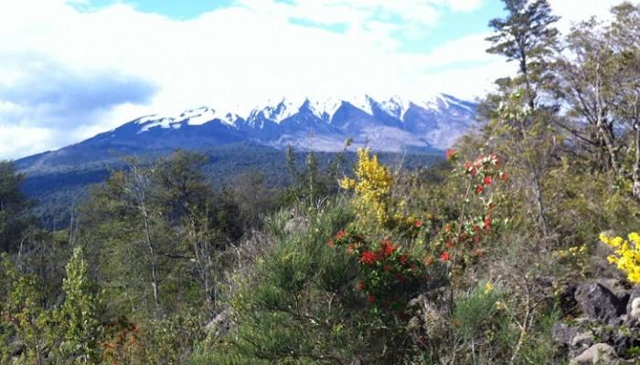 El Sur de Chile, de Concepción a Puerto Montt