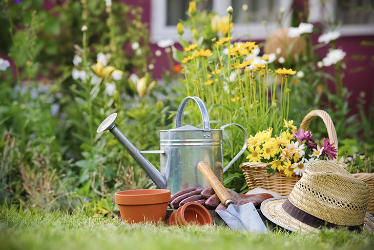 Plantas de primavera para el jardín: Las flores más bonitas