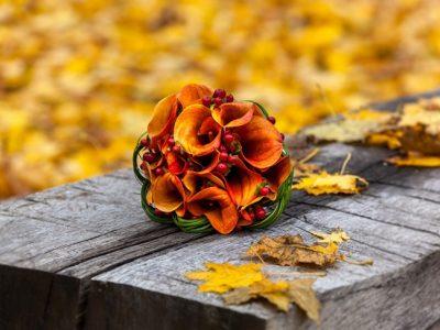 5 Flores de otoño que no te dejarán indiferente