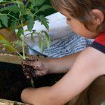 Actividades para niños en primavera: Ideas geniales