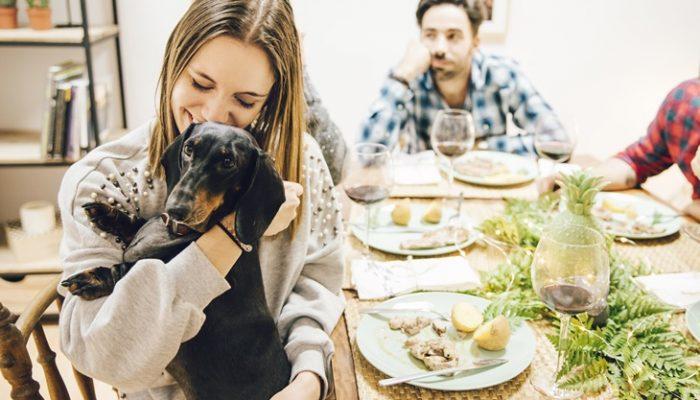 6 razones de peso por las que adoptar una mascota
